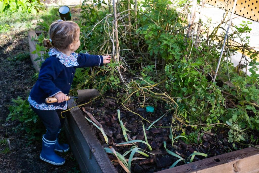 premiers potagers pour jardiner